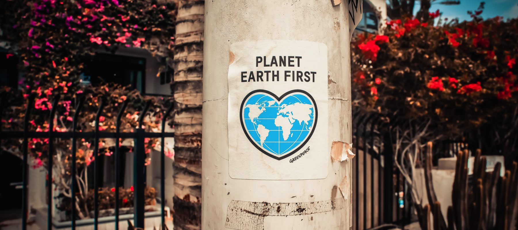 Sustainability, no-one can do everything but everyone can do something, How sustainable is your business?